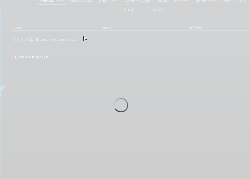 Controller Issue? Problems configuring Radius Server w