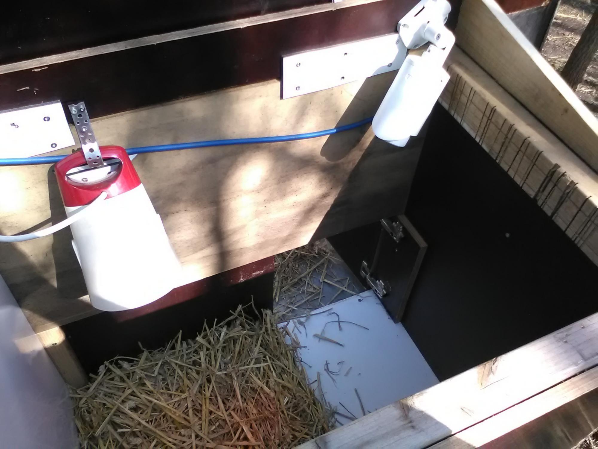 Broody hens and surveillance:) (aka chicken coop live stream