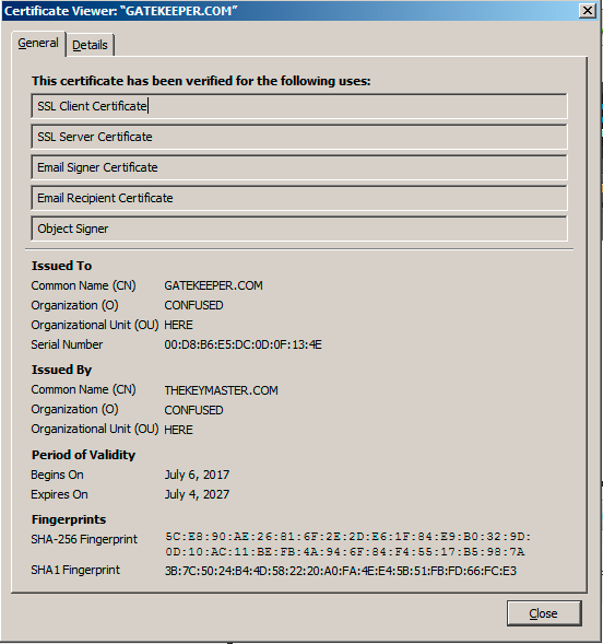 WANTED: Instructions for self-signed certificate that Google Chrome